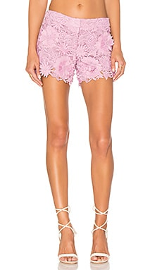 Embroidered Short in Petal