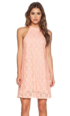 MINKPINK Dancing In the Dark Swing Dress in Blush