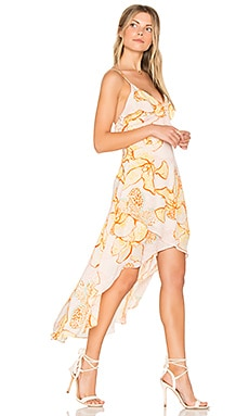 Animal Orchid Flounce Wrap Dress