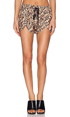 MINKPINK Short in Leopard