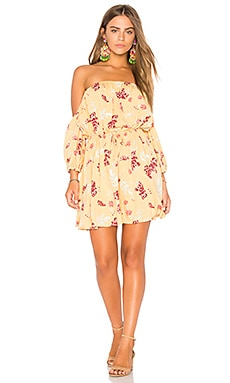 Sundance Floral Mini Dress