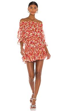 Darla Dress MISA Los Angeles $203