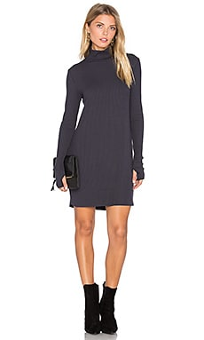 Muse Long Sleeve Turtleneck Dress