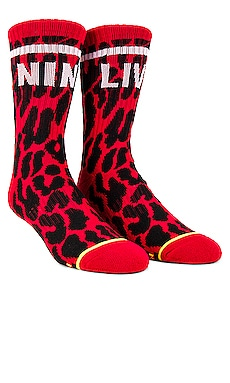CALCETINES BABY STEPS NINE LIVES MOTHER $24