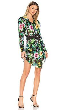 Shelton Print Dress