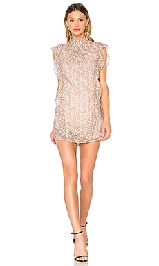 Alaina Lace Dress in Blush Shade