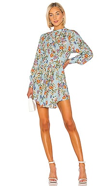 Winnie Print Dress Marissa Webb $445
