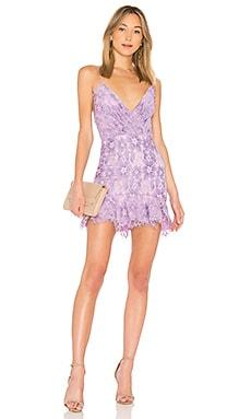 Купить Кружевное платье marilyn - NBD бледно-лилового цвета