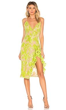 Купить Кружевное миди-платье dragonfly - NBD зеленого цвета