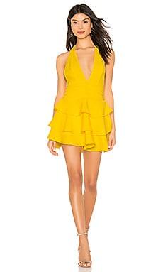 Tweets Mini Dress NBD $228 NEW ARRIVAL