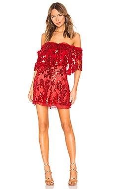 Fern Mini Dress NBD $109