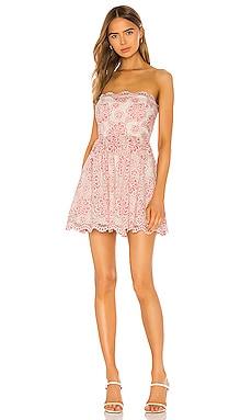 Daimilee Dress NBD $82