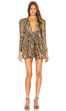 Danjelica Mini Dress NBD $54