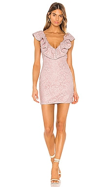Roselyn Mini Dress NBD $71