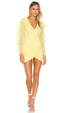 Indira Mini Dress NBD $55 (FINAL SALE)