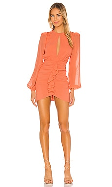 Arijana Mini Dress NBD $218