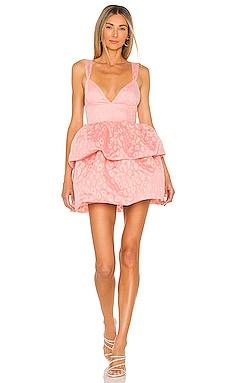 Rita Mini Dress NBD $248 NEW
