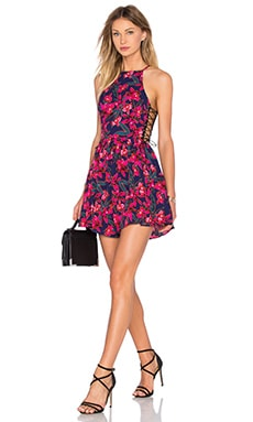 Tropic Dress in Lush Tropical