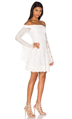 Cornelli Lace Fit & Flare Dress in Ivory