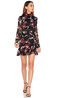 French Floral Dress in French Floral