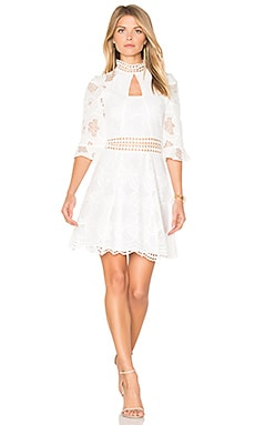 Pollen Lace Panel Dress in Ivory