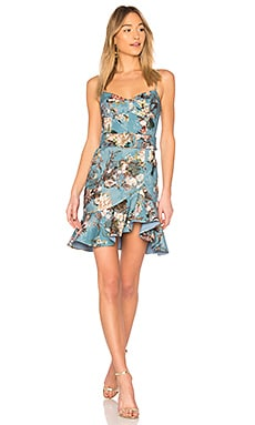 Arielle Floral Frill Mini Dress