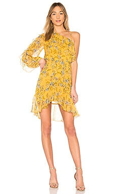 Ava Floral One Shoulder Frill Dress