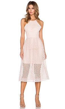 Lattice Lace Tuck Ball Dress in Shell