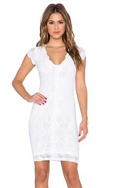 Nightcap Victorian Lace Deep V Pencil Dress in Dove