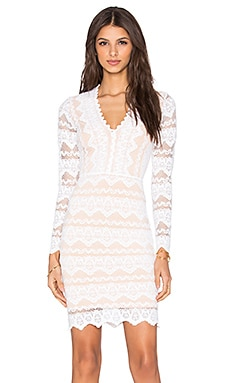 Nightcap Sierra Lace Deep V Dress in Dove & Nude