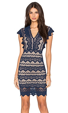 Nightcap Antoinette Dress in Navy & Nude