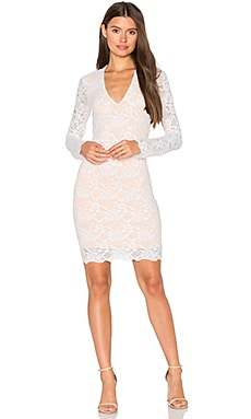 Wisteria Lace Deep V Dress in Dove