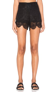 Nightcap Seashell Lace Short in Black