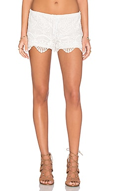 Seashell Lace Short