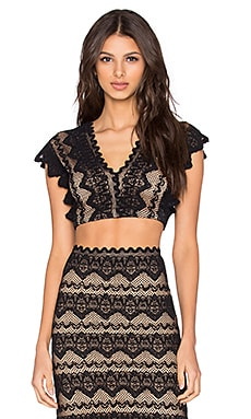 Nightcap Sierra Lace Crop Top in Black & Nude