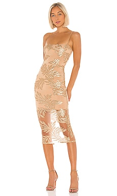 Vanity Midi Dress Nookie $359 BEST SELLER
