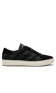 OFF-WHITE Brushed Diagonals Sneaker in Black