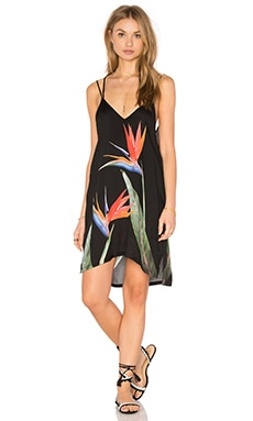 onia Audrey Dress in Birds of Paradise Placement
