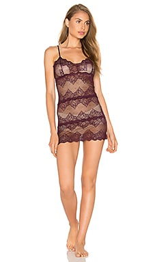 So Fine Lace Chemette in Wine