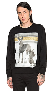 Palm Angels Dogs Crewneck Sweatshirt in Black Multicolor