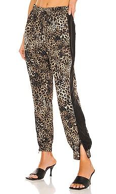 Leopard Windbreaker Pant Pam & Gela $135