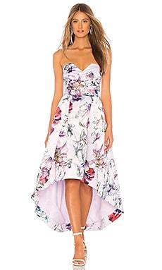 Clemson Dress Parker Black $137