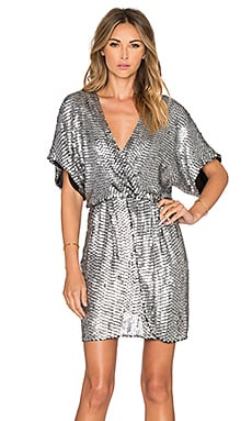 Parker Black Nole Dress in Silver