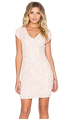 Parker Black Serena Sequin Dress in Blush