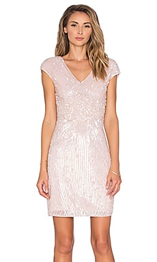 Jessie Embellished Dress en Rubor