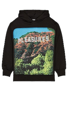 Pleasurewood Studded Hoody Pleasures $120