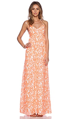 Pia Pauro Ladies Halter Dress in Orange Flower