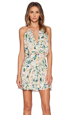 Parker Kennedy Dress in Monticello