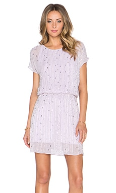 Parker Sequin Hope Dress in Wisp