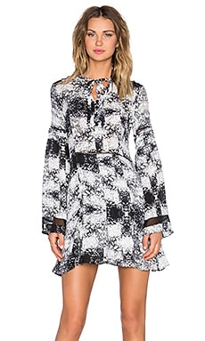 Parker Milly Combo Dress in Chantilly